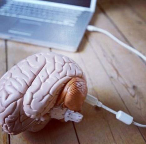Como o cérebro funciona.   BrainLovers   Scoop.it