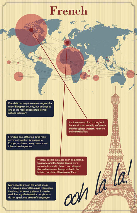 Infographic Of French Tongues Of The World - World of languages infographic