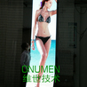 flexible LED display for mobile stage and advertisement (www.ledaliveshow.com