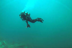 War-time wrecks off Bell Island shore a fascinating dive | All about water, the oceans, environmental issues | Scoop.it
