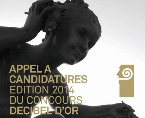 Seizième édition du concours des Décibels d'Or : appel à candidature | Ressources pour la Technologie au College | Scoop.it