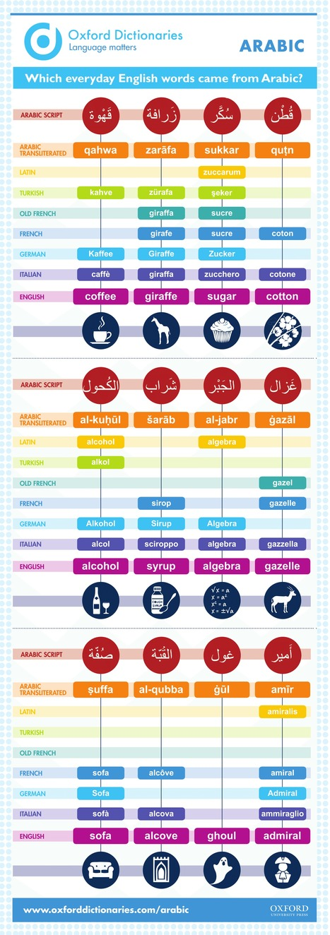 Which everyday English words came from Arabic? [INFOGRAPHIC]   Dana Translation   Scoop.it