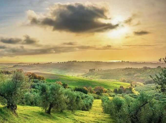 Production in ITALY Bolstered by Strong Recovery in South