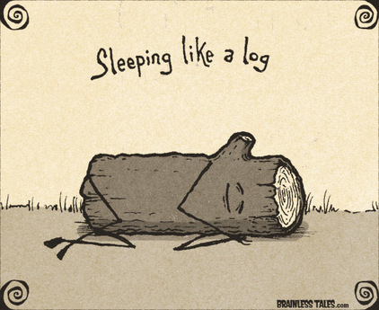 Sleeping Like a Log - Brainless Tales | English language idioms | Scoop.it