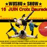 Wushu Show : Les Arts Martiaux à Toulouse