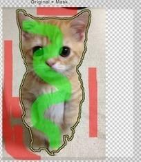 Outil : isoler un élément d'une image avec ClippingMagic | Trucs&Astuces : veille2.0 | Scoop.it