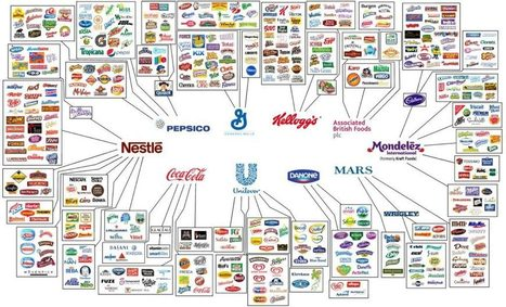 10 Companies That Control Almost Everything We Eat & Drink – Anonymous   IELTS, ESP, EAP and CALL   Scoop.it