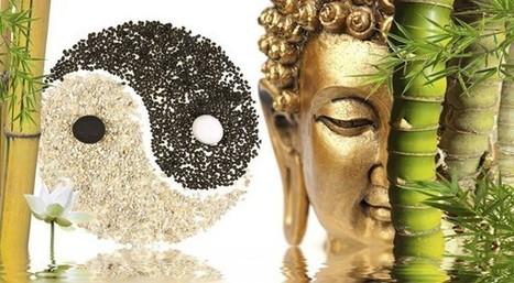 Dieta Macrobiotica: con l'aiuto dello Yin e dello Yang | Moda Donna - sfilate.it | Scoop.it