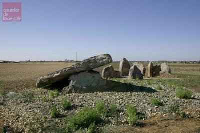Saint-Léger-de-Montbrun. Les trésors du dolmen de Puyraveau au rayon X | World Neolithic | Scoop.it