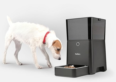 PetNet Automated Feeder and Your iPhone   Healthy Dog Food Plans   Social media Marketing 1   Scoop.it