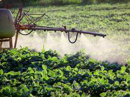 La pulvérisation de pesticides peut transmettre le virus de la gastro ... - TopSanté | pesticides : un vrai cancer social ? | Scoop.it