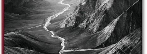 Photo : Sebastiao Salgado Genesis ou Que la terre est belle ! - Unidivers   Photographie   Scoop.it