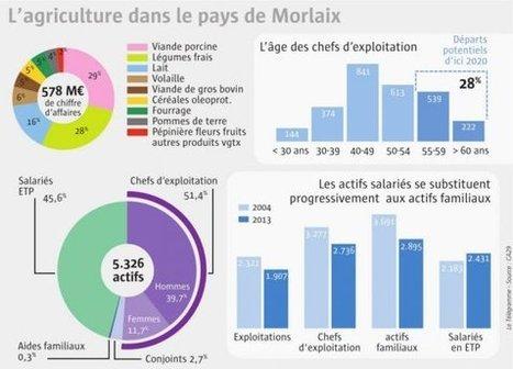 Pays de Morlaix.  1.907 exploitations agricoles | Pays de Morlaix | Scoop.it