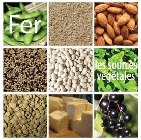 Les sources de fer végétal | Végétarisme, alternative alimentaire | Scoop.it