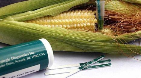 Bayer-Monsanto : les grandes manœuvres dans l'agrochimie - Ouest France | Agriculture en Pays de la Loire | Scoop.it