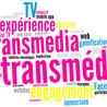 Transmedia et Télévision connectée