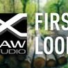 Fuji X Series Experience