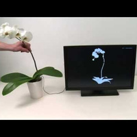 The Next Breakthrough in Computer Control: Plant-Fondling | New inventions | Scoop.it
