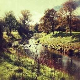 Autumn Stories - Week #13   Autumn stories   Scoop.it