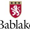Bablake News! (December 2011)