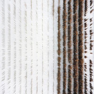 Abstract Photography by Gerco de Ruijter | Interesting Photography | Scoop.it