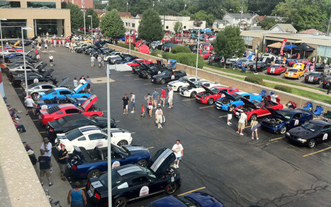 20 years of SVT and Ford Mustang goodness at Woodward Ave - StangNet.com | Mustangs | Scoop.it