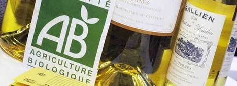 America vs. Europe: The Organic Divide | Wine News & Features | Grande Passione | Scoop.it