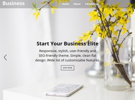 20 Free WordPress Themes for Business Consultants | Front End Development | Scoop.it