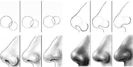 Nose Drawing Tutorial In Drawing References And Resources