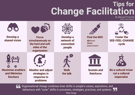 Tips for Change Facilitation – Changing Dojo  | Network Leadership | Scoop.it