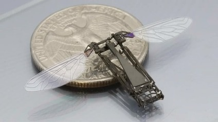 Micro-Drones That Are Completely 3D Printed | Disrupt 3D | Robotics Frontiers | Scoop.it
