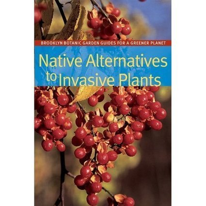 Plant This Not That: Native Alternatives to Invasive Plants | Garden Libraries | Scoop.it