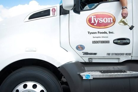 Lab-Grown Meat? Tyson Foods Launches $150 Million Venture Capital Fund For Startups To Focus On Meatless Future | Entomophagy: Edible Insects and the Future of Food | Scoop.it