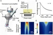 Optopatcher—An electrode holder for simultaneous intracellular patch-clamp recording and optical manipulation | tec2eso23 | Scoop.it