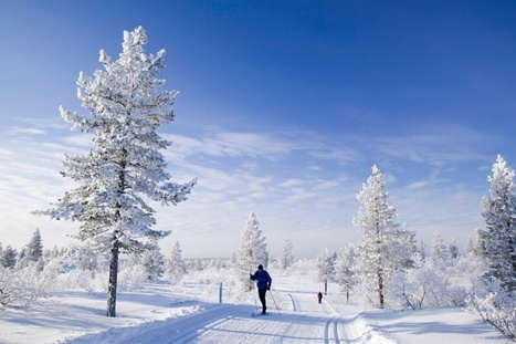 Best Countries in the World - Newsweek | Finland | Scoop.it