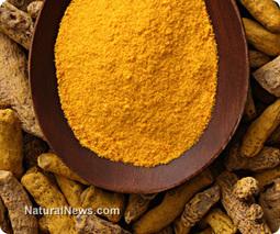 Six ways turmeric heals your overburdened body | Foodies (Rawism, Vegetarianism, Veganism) | Scoop.it