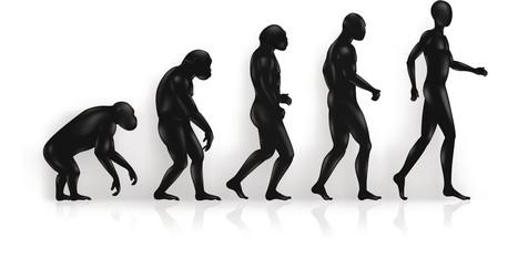 Religious Belief Has HUGE Impact On Views On Evolution   Science vs Religion   Scoop.it