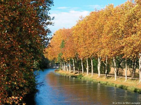 Un guide gratuit autour des rigoles du canal du Midi   UseNum - Tourisme   Scoop.it