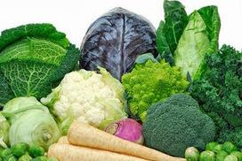These Vegetables Can Protect You From Fukushima Radiation #radiation #fukushima | Plantsheal | Scoop.it