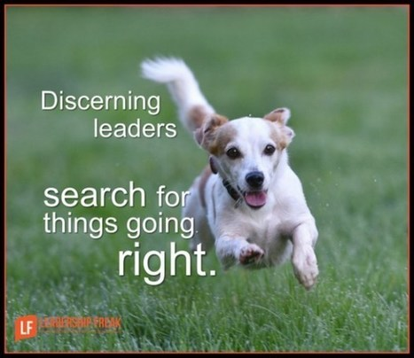 10 Ways to be a Discerning leader (rather than condemn) | Training in Business | Scoop.it