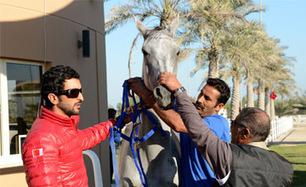 Shaikh Nasser bin Hamad hails endurance young riders - Bahrain News Agency   Endurance Riding   Scoop.it