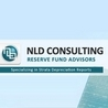 NLD Consulting - Depreciation Reports