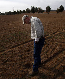 California drought 'a borderline catastrophe' in rural area - The Seattle Times | Local Economy in Action | Scoop.it