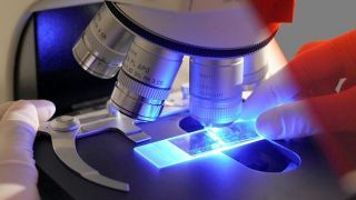 Cancer trials can lack clear information on biopsies | Cancer Biology Research Digest | Scoop.it