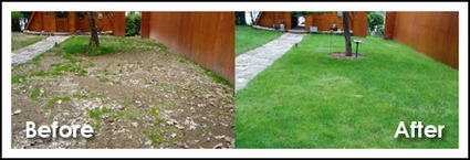 Grass Stitcher: Innovative Lawn Repair and Seeding Tool   Innovative Inventions Ideas and Solutions   Scoop.it