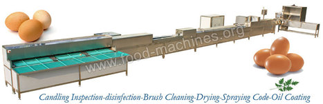 Full Automatic Egg Cleaning Grading Machine-Egg Processing Machinery Supplier | Advaned Processing Machinery | Scoop.it