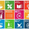 Sustainable Universities
