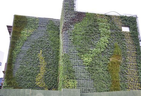 First Views of New Green Living Wall on London Tube Station : TreeHugger - StumbleUpon   Cultivos Hidropónicos   Scoop.it