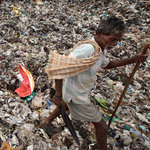 India's Plague, Trash, Drowns Bangalore, Its Garden City | The Glory of the Garden | Scoop.it