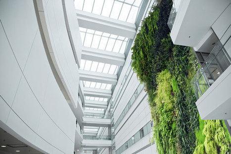 Living Walls Transform Green InteriorsDesignBuild Source Canada   Green Building Design - Architecture & Engineering   Scoop.it